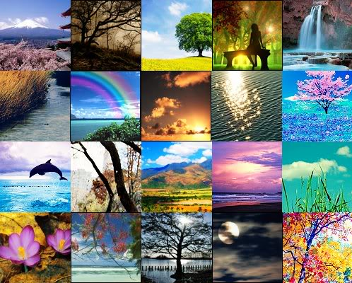 naturecollage